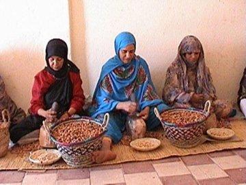 Arganadir Bio Arganöl geröstet und kaltgepresst 250 ml | Vegetarisches Delikatess-Speiseöl | Rein Vegan Fair | Für Salate kalte und warme Küche und als Nahrungsergänzung | Von Souk du Maroc - 7